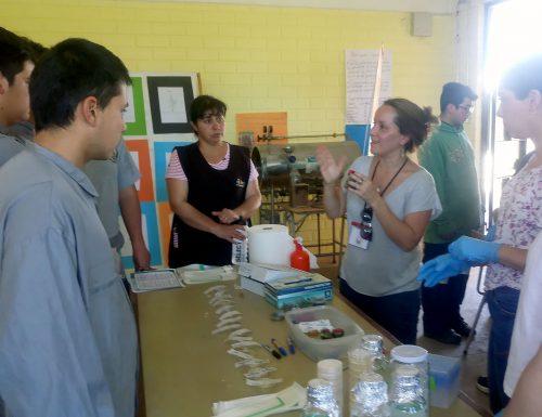 Investigadoras de la USM llevan la agricultura ecológica a colegio de la V Región